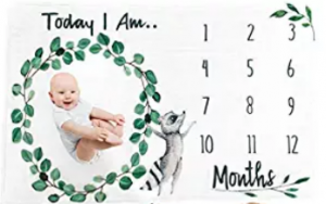 easy milestone photo mat